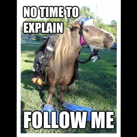 Time for 30,000 followers  New Follow Game! Got followers? Like this post and follow the instructions above to get more followers!! I'm aiming for 30,000 followers and would appreciate all of your help, so please share, share, share!  ‼️PLEASE NOTE: I follow back 100% of the poshers who like this follow game & have COMPLIANT CLOSETS...it may not be immediately or same day however I do regularly check this post‼️  Other