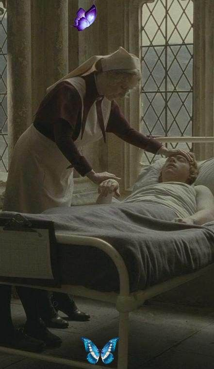 Poppy Pomfrey Madame Pomfrey Ron Br Madam Poppy Pomfrey Was A British Witch And The Matron At Hogwarts Harry Potter Wiki Harry Potter Pictures Harry Potter