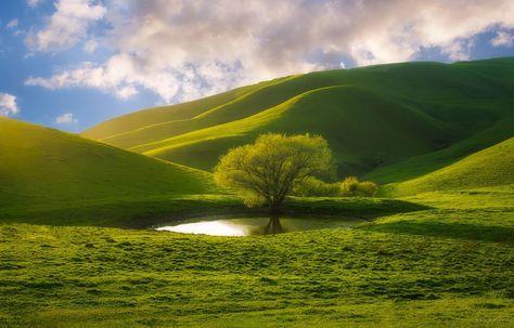 Nature is beautiful. : pics