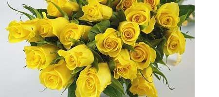 Fantastic Free Of Charge Yellow Roses Meaning Ideas