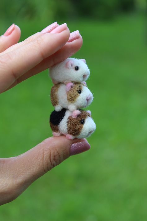 Handmade needle felted tiny Guinea pig in 1/6 scale.