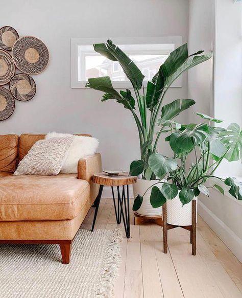 #gardendesign #DIYProjects #HomeAccessories #HomeDécor #TinyHouseIdeas #HomeMaintenance #GardenDesign