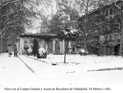 900 Ideas De Valladolid Pucela En 2021 Valladolid España Fotos Antiguas Ciudades Españolas
