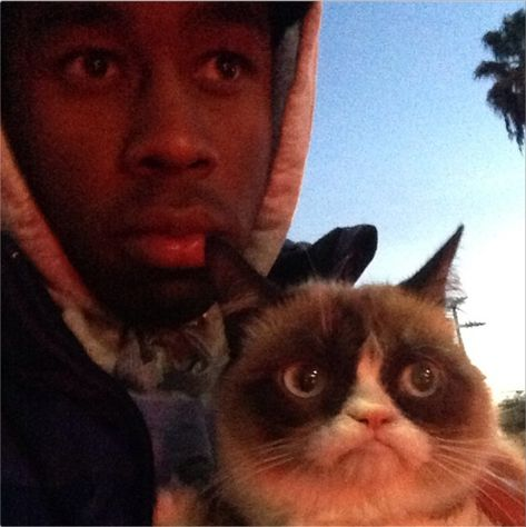 Tyler the Creator holding grumpy cat Ace Of Spades Tattoo, Doja Cat, Grumpy Cat, Cats, Photographie Indie, Tyler The Creator Wallpaper, Tyler The Creator Lyrics, Current Mood Meme, Ace Hood