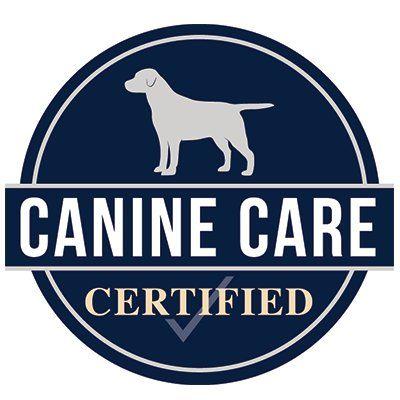 Canine Care Ctfd (@CanineCareCtfd)