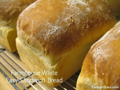 Old-Fashioned Farmhouse White: An Easy Basic White Sandwich Bread Recipe - My most popular bread since 2007 (over 21k pins!), it's the perfect learning loaf. Master the basic simple formula, then experiment with adding whole wheat, oats, cinnamon & raisins, etc. Enjoy!