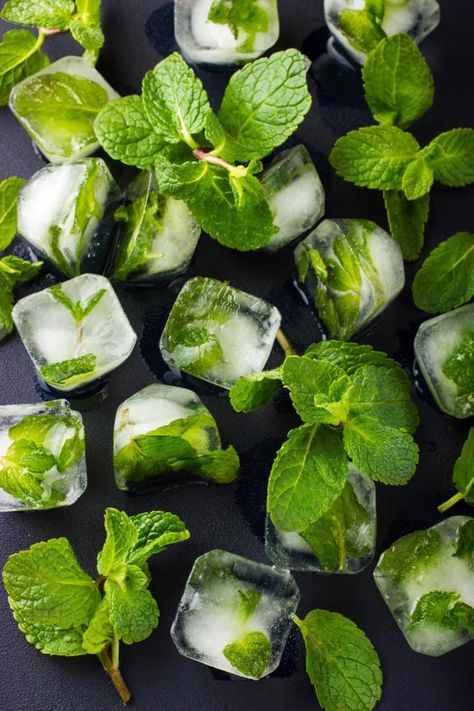 Mint ice cubes, from Old Farmer's Almanac (great for iced tea, or water)!Mint ice cubes, from Old Farmer's Almanac (great for iced tea, or water)! Flavored Ice Cubes, Healthy Drinks, Healthy Recipes, Healthy Water, Carrot Recipes, Detox Drinks, Salmon Recipes, Flavor Ice, Iced Tea