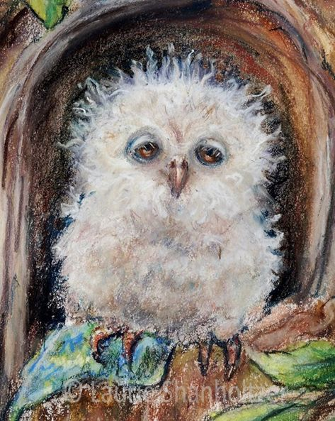 Owl Nursery baby wall art animal bird woodlands museum quality flat canvas print