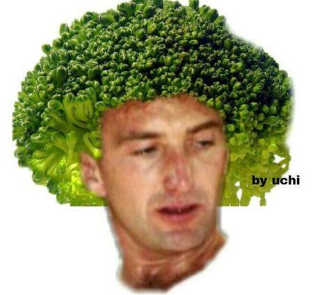 Memes de Queen - memes - Wattpad