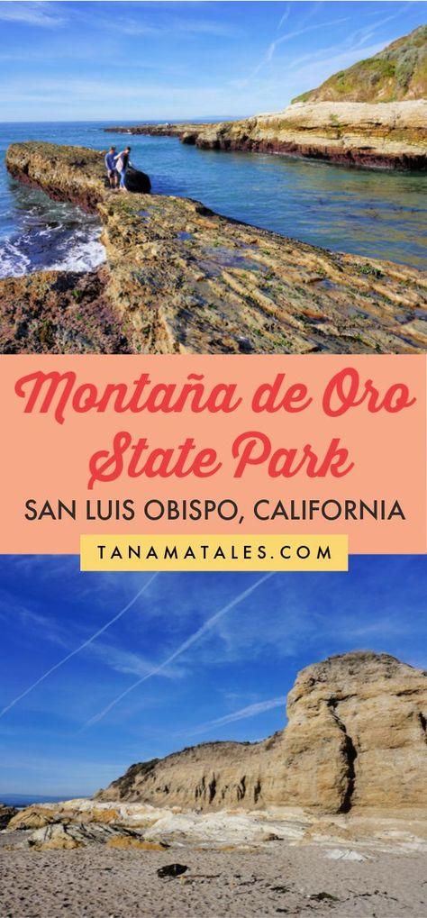 Montaña de Oro State Park, San Luis Obispo, California - Tanama Tales