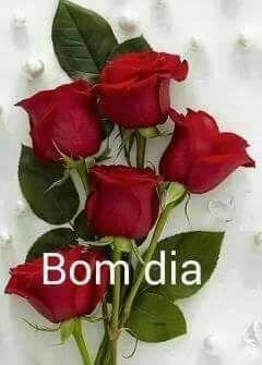 Pin De Nil Em Buenos Dias Arranjos De Rosas Vermelhas Buque De