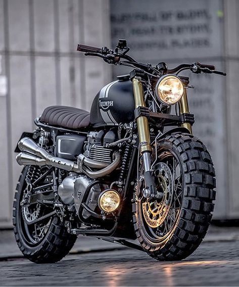 triumph down and out t100 is both burly and bonnie Triumph Bobber, Triumph Cafe Racer, Ducati Scrambler, Yamaha R1, Triumph Scrambler Custom, Scrambler Motorcycle, Motorcycle Style, Cafe Racers, Motorcycle Touring