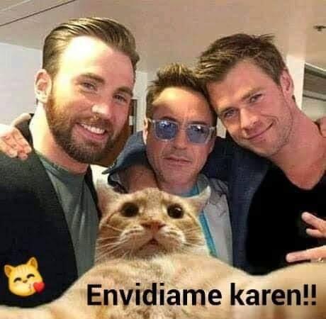 Memes De Karen Y El Gato Parte 6 Memes En Espanol La Mejor Recopilacion De Memes Lo Mas Viral De Inter Memes Graciosos De Animales Memes Divertidos Memes