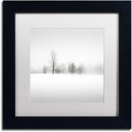 Trademark Fine Art Winter Fog Canvas Art by Dave MacVicar, White ...