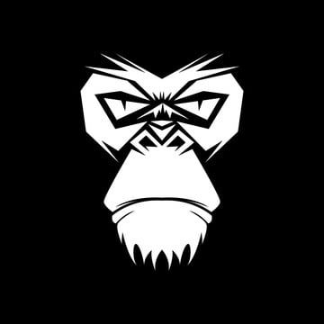 Gorilla Head Vector Illustration West Wild Vector Png And Vector With Transparent Background For Free Download Vector Illustration Gorillas Art Monkey Art