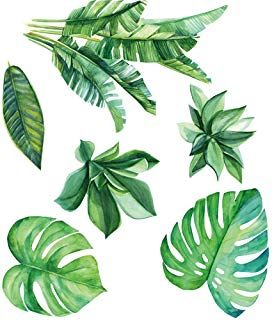 Amazon Com Palm Leaf Wall Stickers Tropical Wall Decals Wall Stickers Wall Decal Sticker Tropical leaves transparent images (51). pinterest