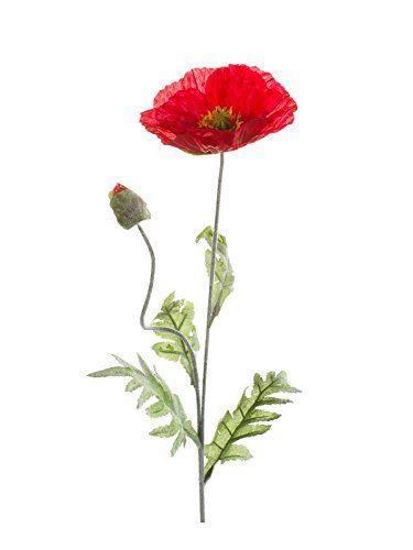 Set 6 X Kunstliche Mohnblume Rot 70 Cm 6 Stuck Deko M Https Www Amazon De Dp B01n2bhjna Ref Cm Sw R Pi Dp U X Vqfxbb560 Kunstpflanzen Mohnblume Blumen
