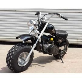 Top Rated Reasons To Buy Gas Powered Motorbikes And Trikes Kids