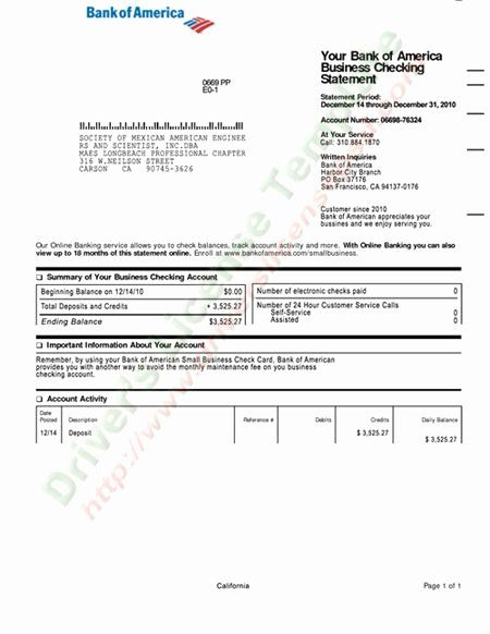 Fake Chase Bank Statement Template Unique Fake Business Bank Statements Business Template Example Statement Template Bank Statement Chase Bank