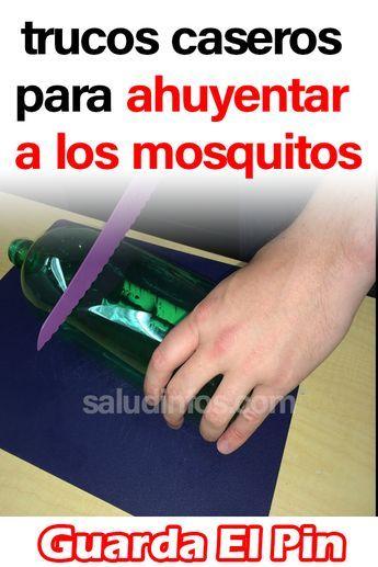 Trucos Caseros Para Ahuyentar A Los Mosquitos Saludybienestar Consejosparalasalud Remedioscaseros Saludyejercicio Comidasaludable Saludynutricion Fitbit