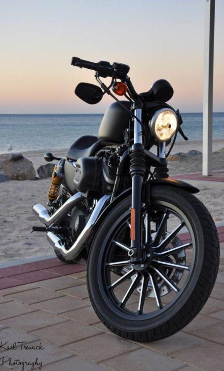 8 Best Harley 883 Images On Pinterest