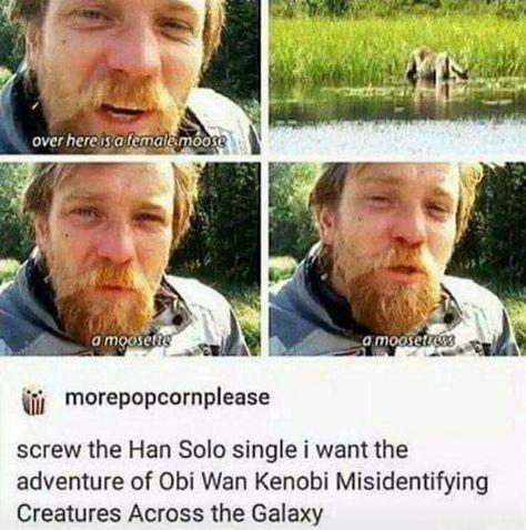 Obi Wan is awsome. Don't get me wrong, so is Han, but I really like Obi Wan Star Wars Logos, Star Wars Poster, Star Wars Meme, Star Wars Tattoo, Star Trek, Obi Wan, She Wolf, Fandoms Unite, Love Stars