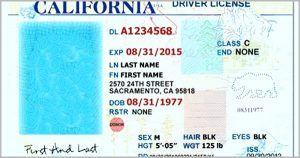 California Id Template Trend California Drivers License Template