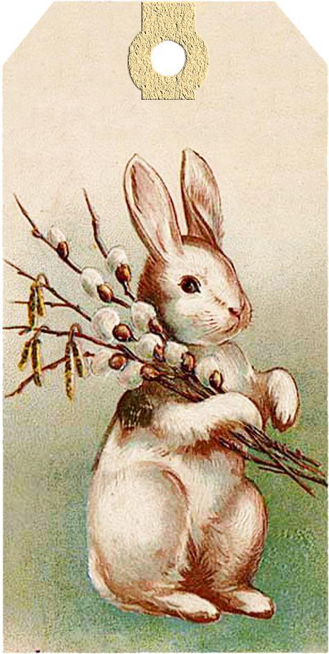 Днем рождения, открытки с пасхальным зайцем