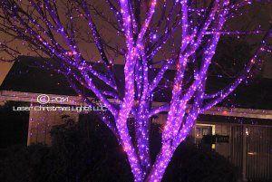 Pro 4203608 Morning Dew Lawn Sprinklers White Plains Ny 10604 Laser Christmas Lights Christmas Lights Best Christmas Lights