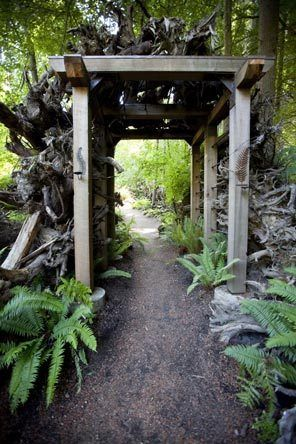 Stumpery on Vashon Island - Walt Riehl built a metal armature to support the stumps that line the garden's tunnel entry.