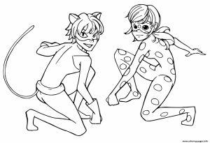Biedronka I Czarny Kot Kolorowanki Kot Czarny I Kolorowanki