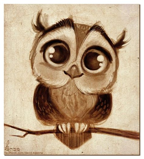 Adorable Owl Drawing