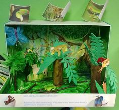List of habitat projects for kids shoe box desert pictures