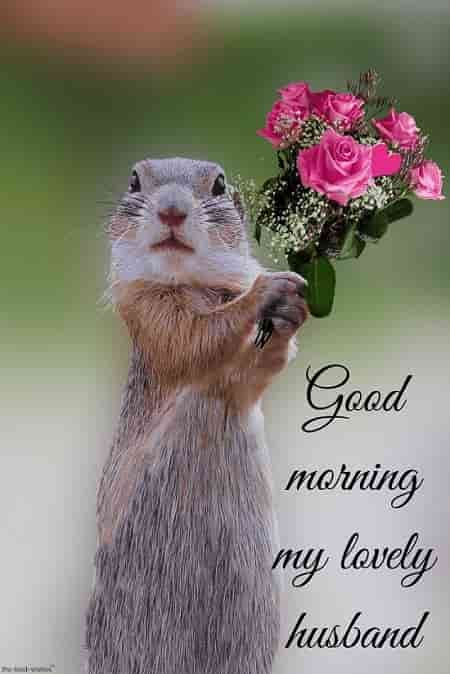 Romantic Good Morning Message For Husband Best Collection Sunday Morning Humor Happy Day Quotes Morning Quotes Funny