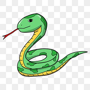Cartoon Snake Cartoon Clipart Snake Clipart Green Png Transparent Clipart Image And Psd File For Free Download Cartoon Clip Art Clip Art Cartoon