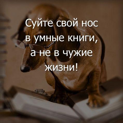 https://i.pinimg.com/474x/20/92/9f/20929f69c7275316ba8010b0c9b9f55d.jpg