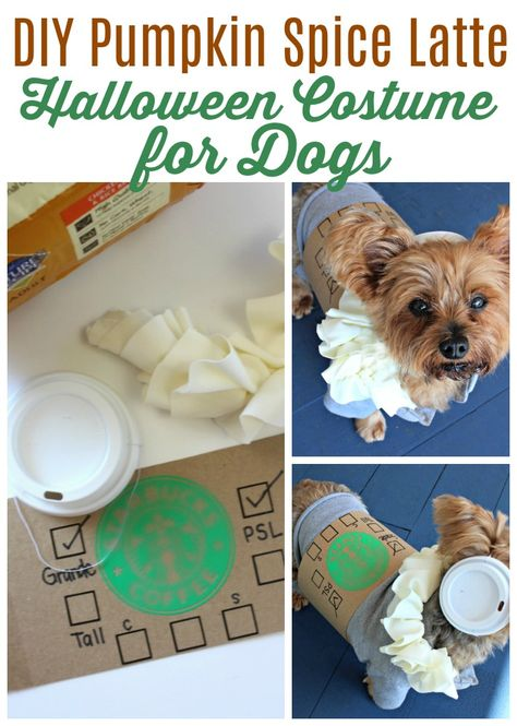 Looking For Adorable Diy Dog Costumes For Halloween This Easy