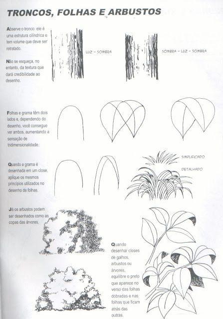 Desenhar Plantas Manga Tutoriais De Desenho De Flor Desenho