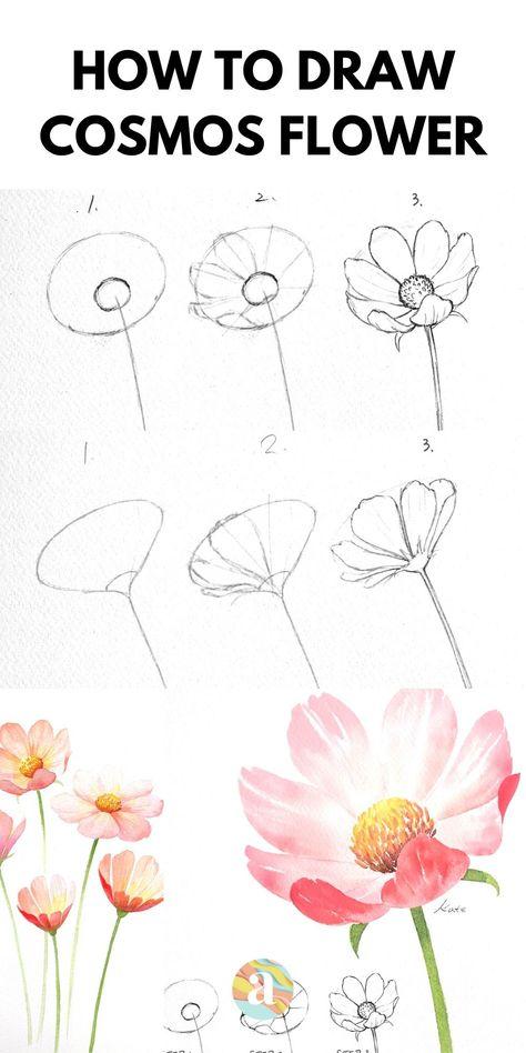 Easy Flower Drawings, Flower Art Drawing, Flower Drawing Tutorials, Flower Sketches, Floral Drawing, Plant Drawing, Pencil Art Drawings, Art Drawings Sketches, Realistic Flower Drawing