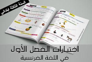 تقويمات الفصل الأول للسنة الأولى ابتدائي في نشاط التربية الإسلامية التربية المدنية التربية العلمية والتكنولوجية Blog Blog Posts Bullet Journal