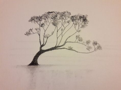 Alberi Disegno A Matita.Lago Wanaka Grafite Paesaggio Wanaka Disegno Matita