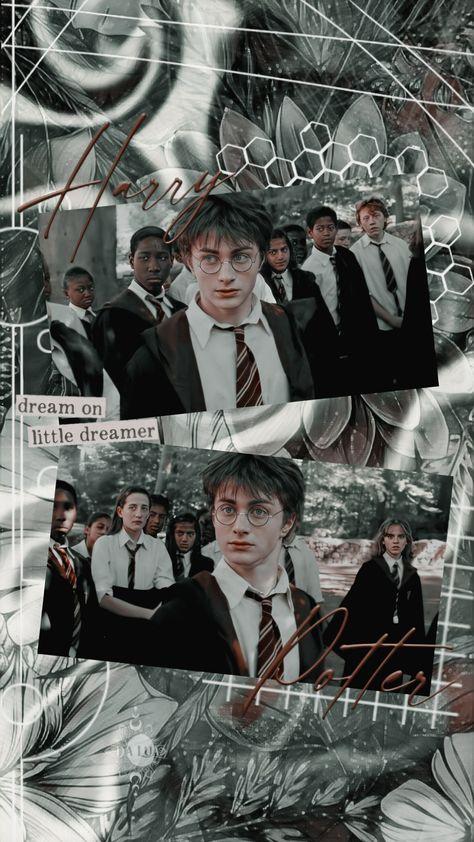 Wallpaper — Harry Potter