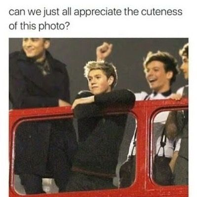 One Direction Interviews, One Direction Cartoons, One Direction Images, One Direction Quotes, One Direction Wallpaper, I Love One Direction, Funny Photo Memes, Funny Photos, Niall Horam
