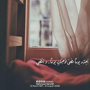 Pin By Maha Al Zubaidy On مقــهى أحلى الكلمات و بريـــق حروفها Arabic Words Arabic Quotes English Quotes