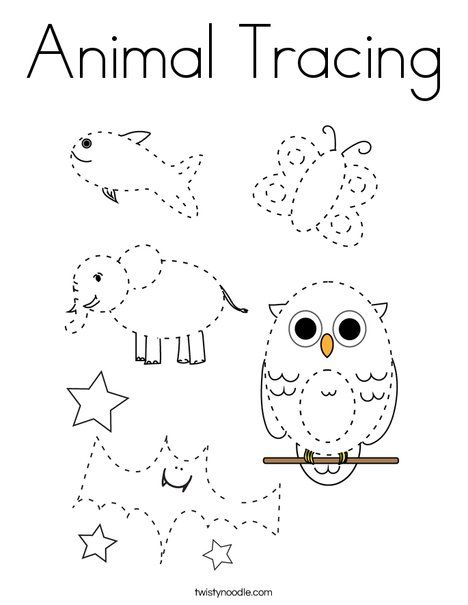 Animal Tracing Coloring Page Twisty Noodle Tracing Pictures Coloring Pages Color Activities