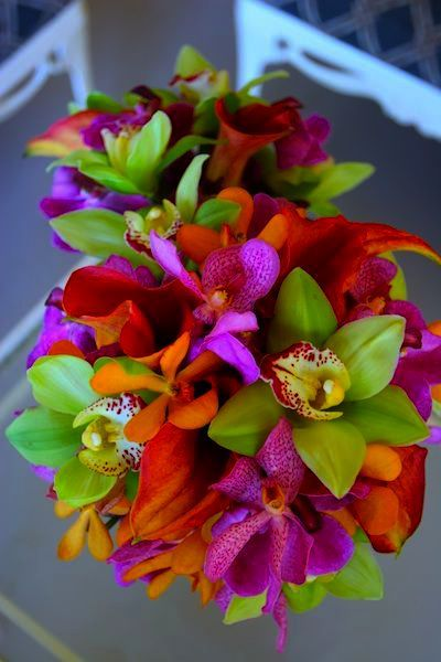 Wedding Flowers Prices South Africa Across Wedding Songs Remix Mp3 Free Download If Wedding Wis Tropical Wedding Flowers Wedding Flowers Church Wedding Flowers
