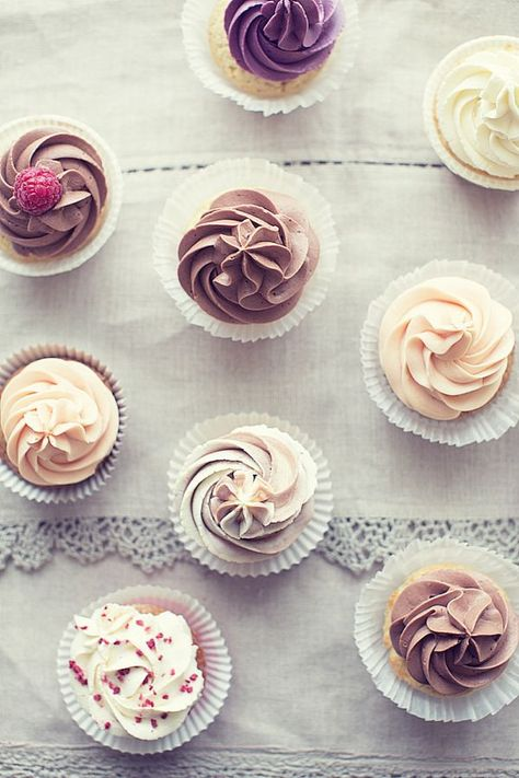 Cupcakes (by ingwervanille)