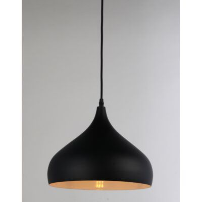 Brantner 1 Light Single Teardrop Pendant In 2021 Black Hanging Lighting Modern Ceiling Light Black Pendant Light