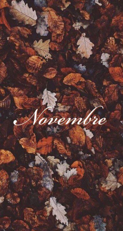 65 Trendy Fall Wallpaper Phone Tumblr November Autumn Leaves Wallpaper Fall Wallpaper Cute Fall Wallpaper