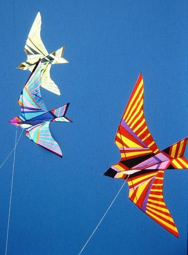 Its been years since I've flown a kite.  I must revive my kite | Bird kites by George Peters